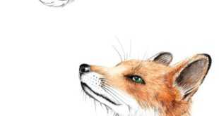 Illustrations - Fox with feather - a unique product by janine sommer on DaWa ...