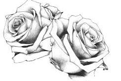 Image result for template roses tattoo