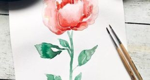 Rose paint with watercolor