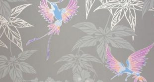A hummingbird of exotic colors among the foliage, which bears the name of the trop ...