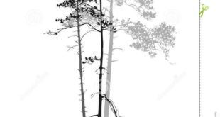 Silhouette of the tree line - Google Search