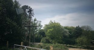 We have an old windmill on site that once served as a water pump. We hope