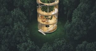 To be introduced, please follow us · · · Treehouse Rendering of , , , , ,