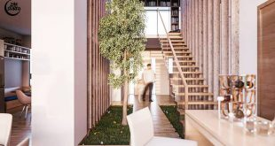 Kitchen / Access / Library - EME House | Morelia, Mexico . . .