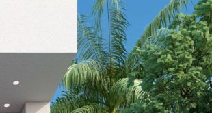 Corona Renderer classes for professionals and students have started Outdoor photo zone