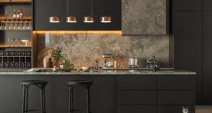 minimalistic kitchen interior design project. a small island is used in the kitchen,
