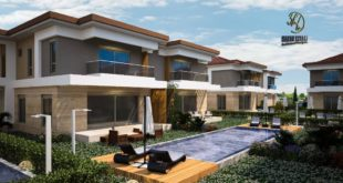 Visualization of the facade of the villa ... ... ...